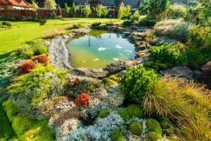 Backyard Hardscaping