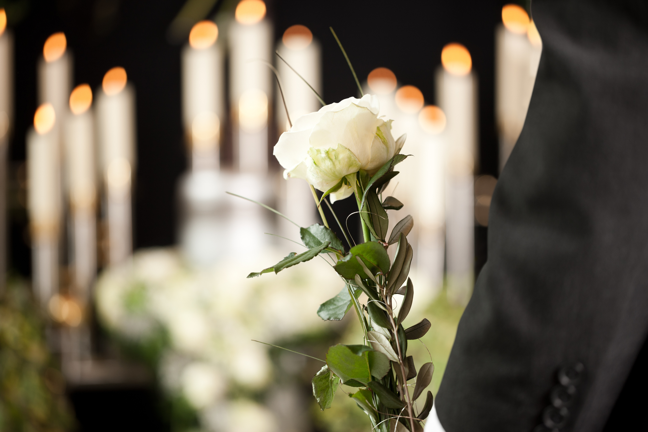 Offering of a funeral rose