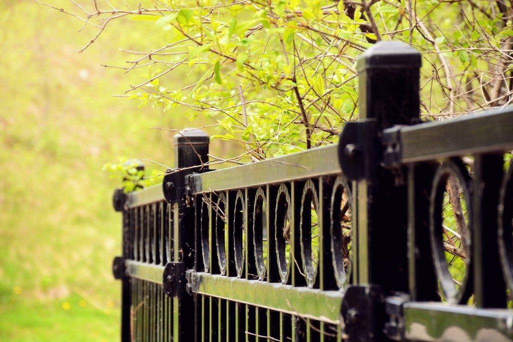 Aluminum fence next to trees
