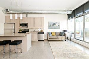 Minimalist industrial condominium