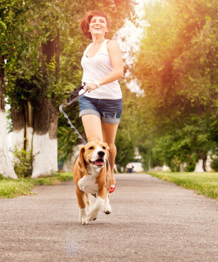 Happy young woman walking with her beagle dog