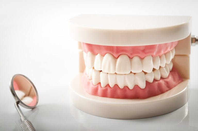 teeth model and dental mirror