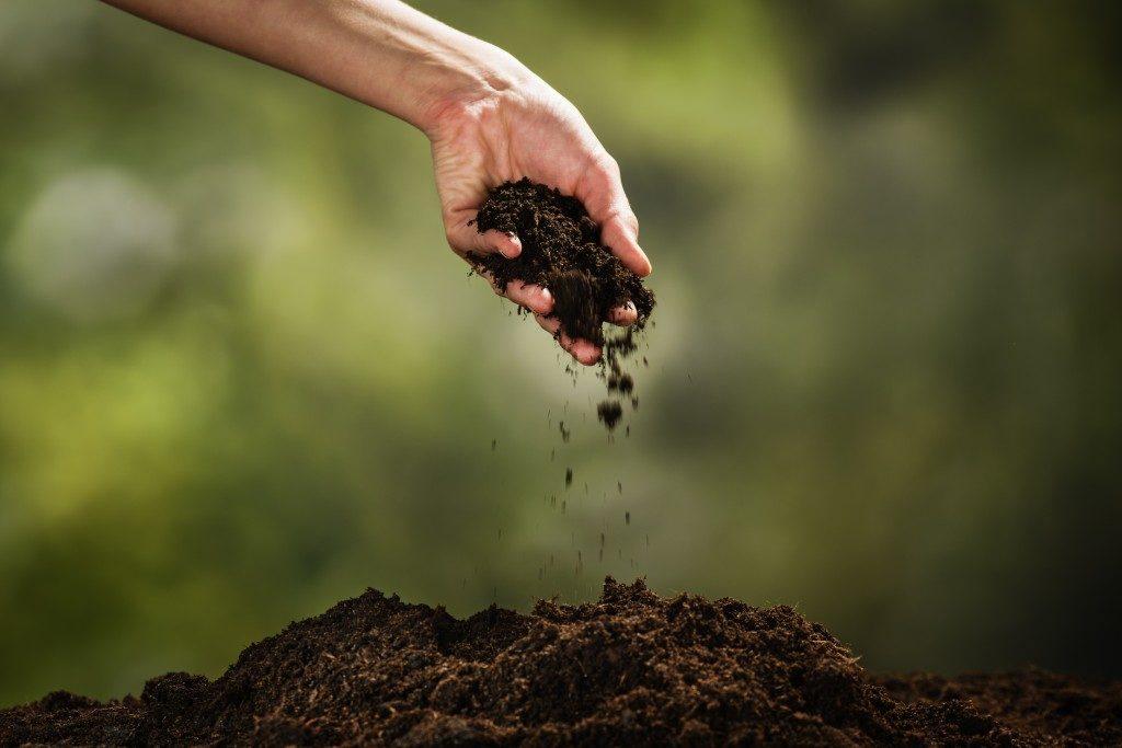 rich brown soil