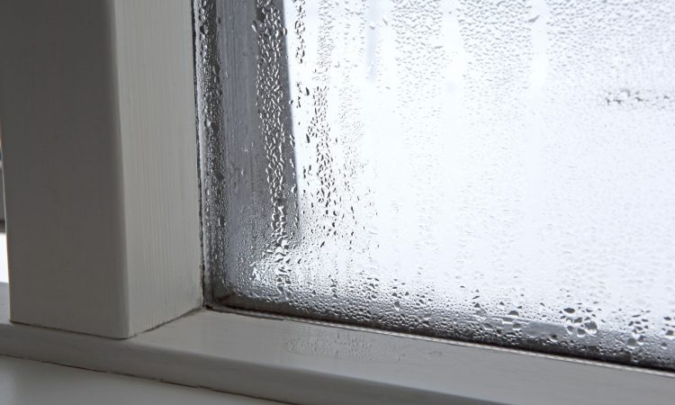 Moisture on the window