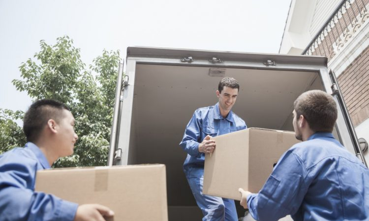Movers loading boxes